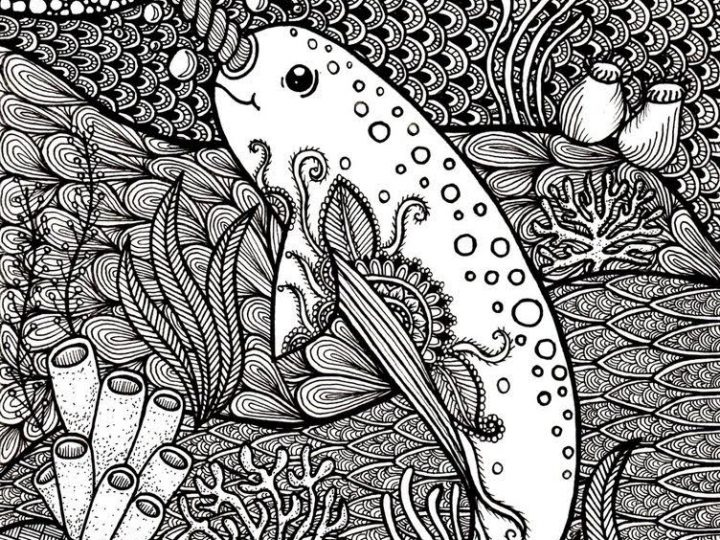 Zentangle Narwhal by Amber Drake