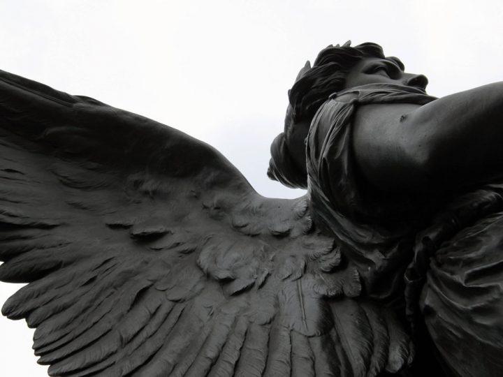 """Angel"" by Tiare Devenot"