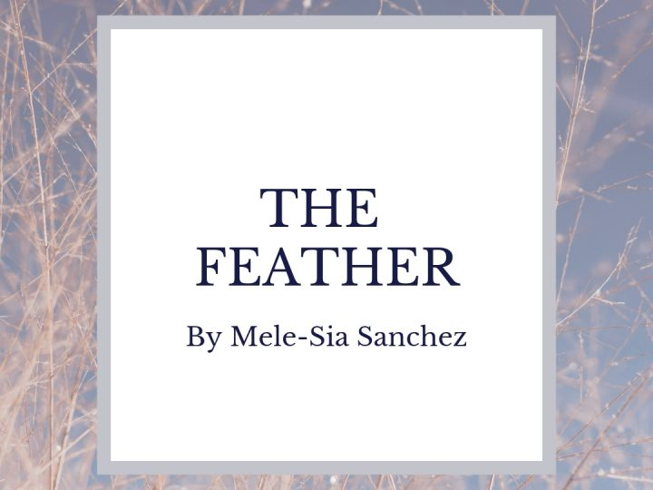 """THE FEATHER"" by Mele-Sia Sanchez"