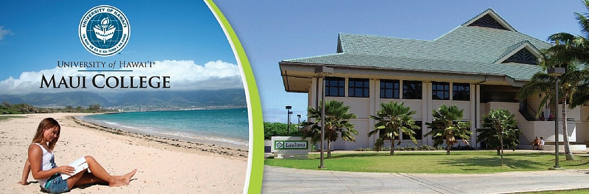 "<a href=""http://maui.hawaii.edu/mli/apply/""><strong><em>SUMMER I SESSION</em></strong></a>"